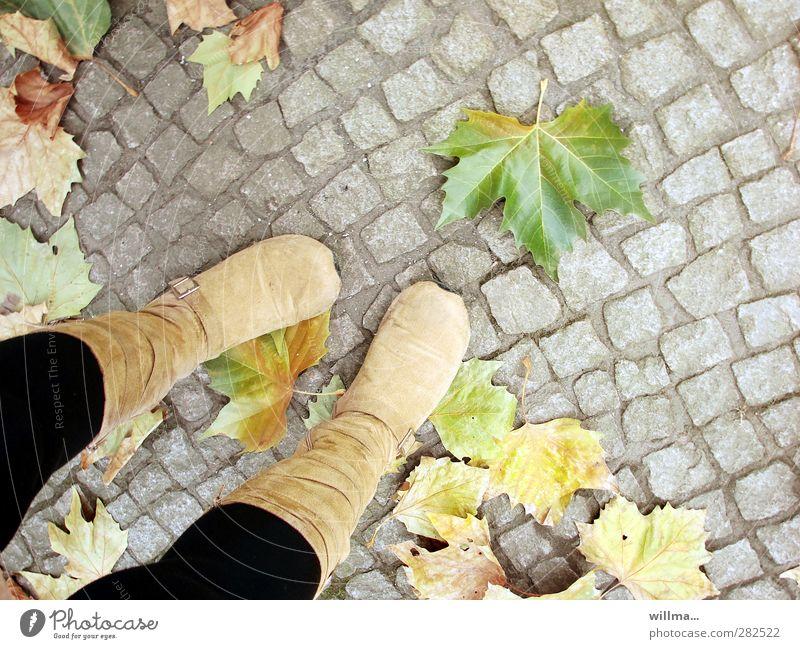 buntpflaster Beine Fuß Herbst Blatt Ahornblatt Stiefel stehen Vergänglichkeit Pflastersteine Wildlederstiefel Jahreszeiten warten Farbfoto Außenaufnahme