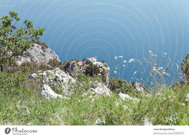 happy duttday! Ferien & Urlaub & Reisen Sommer Sommerurlaub Meer Natur Landschaft Felsen Adria Kroatien Istrien Dorf Haus natürlich blau grün Freiheit Ferne