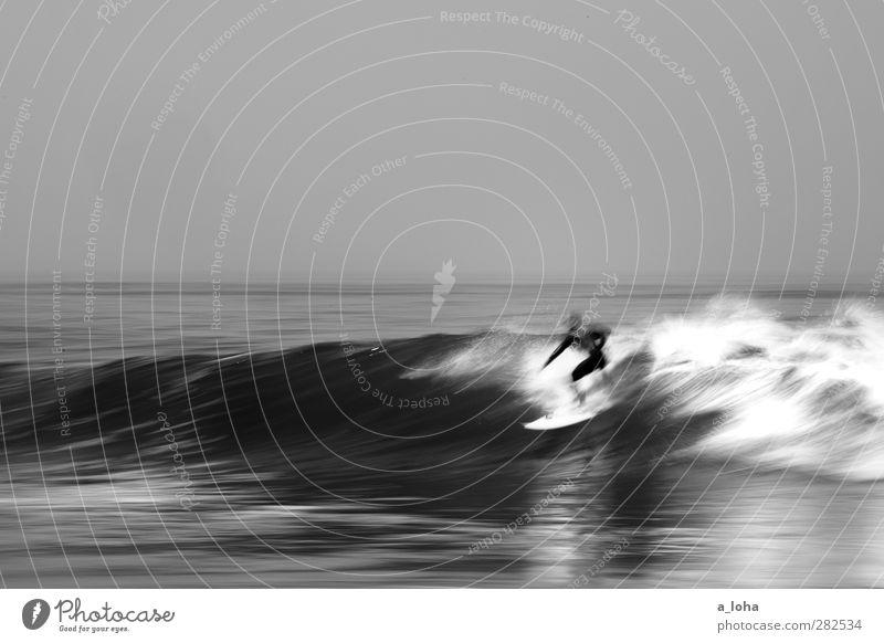 right-hander II Lifestyle Freizeit & Hobby Sport Wassersport Sportler Mensch 1 Natur Urelemente Wolkenloser Himmel Horizont Schönes Wetter Wellen Küste Meer