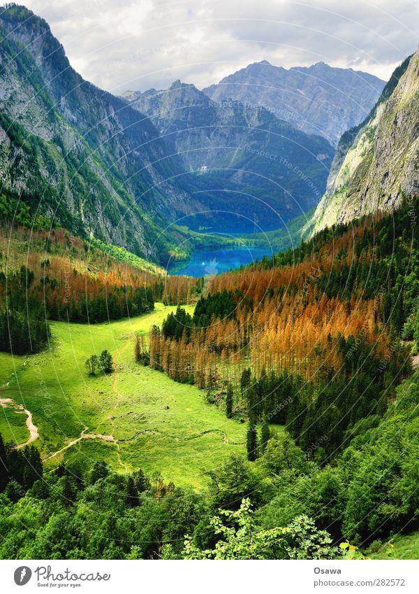 Obersee, Bob Ross Edition Berge u. Gebirge Alpen Berchtesgadener Alpen Nationalpark See Königssee Wald Baum Wiese Alm Watzmann wandern Bergsteigen Steig Felsen