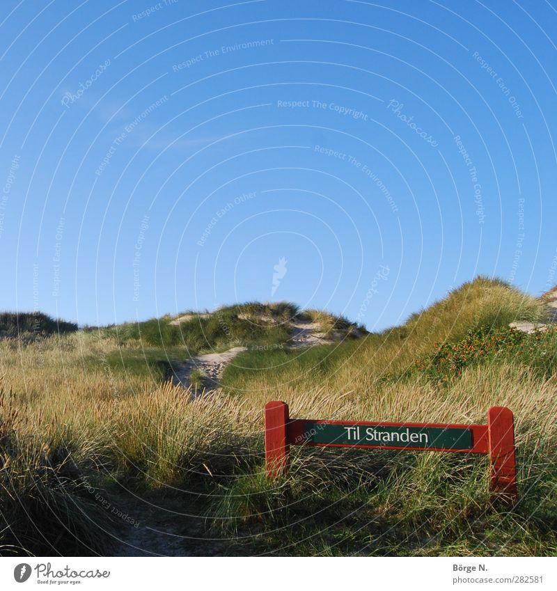 Til Stranden Schwimmen & Baden Ferien & Urlaub & Reisen Sommerurlaub Meer Natur Landschaft Sand Himmel Schönes Wetter Gras Küste Nordsee Dänemark Erholung