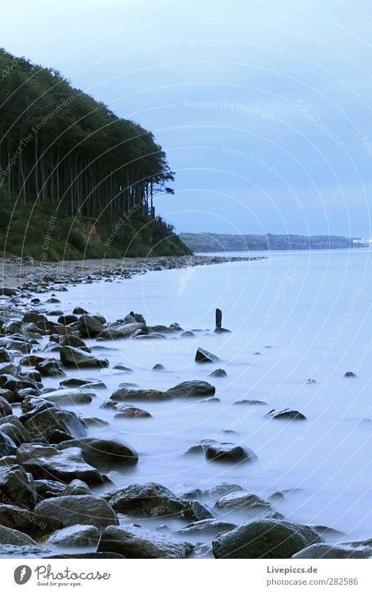Dämmerung an der Ostsee Himmel Natur blau Wasser grün Pflanze Baum Meer Wolken ruhig Landschaft Wald Umwelt Küste grau Sand