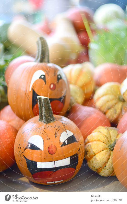 Kopf und Lebensmittel Gemüse Ernährung Bioprodukte Gesicht Auge Lächeln lachen Gefühle Freude Fröhlichkeit Begeisterung Euphorie Kürbis Kürbiszeit Halloween