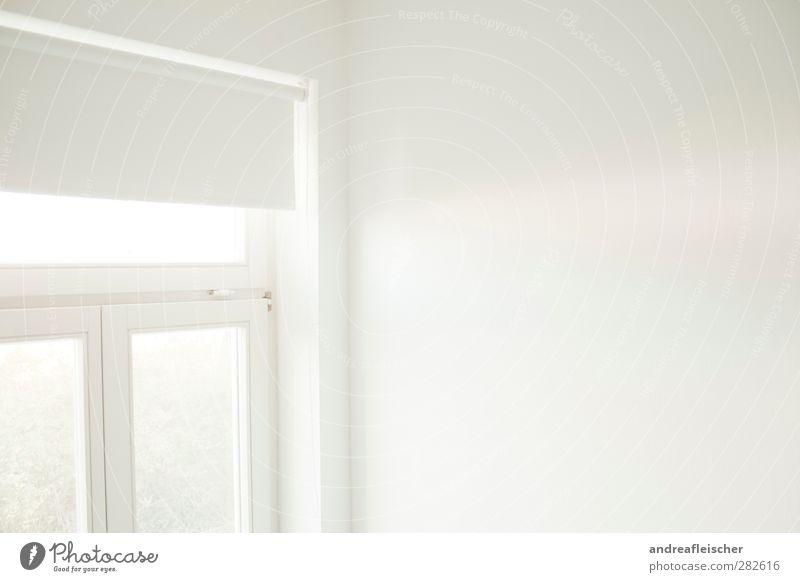 weiße schatten. weiß Einsamkeit ruhig Haus Wand Innenarchitektur Autofenster hell Wohnung Klarheit Aussicht Umzug (Wohnungswechsel) sanft reduziert Sichtschutz Fensterrahmen