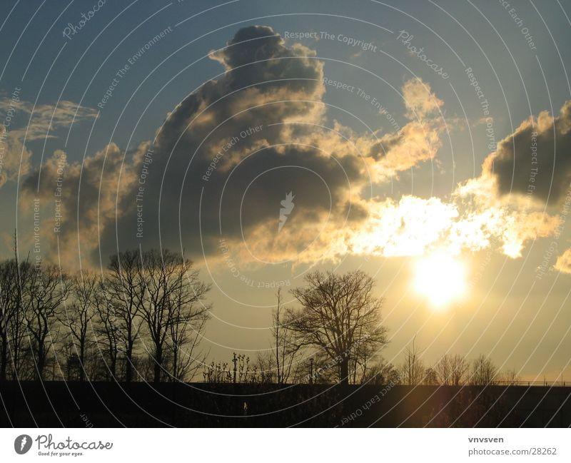 Frühlingsabend Himmel Baum Sonne Wolken