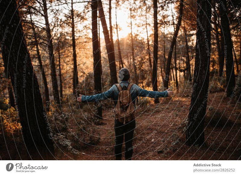 Ein Mensch im Herbstwald Tourist Wald Rucksack Tourismus Ferien & Urlaub & Reisen Abenteuer Jugendliche Ausflug Backpacker Reisender breit Hand ländlich Natur