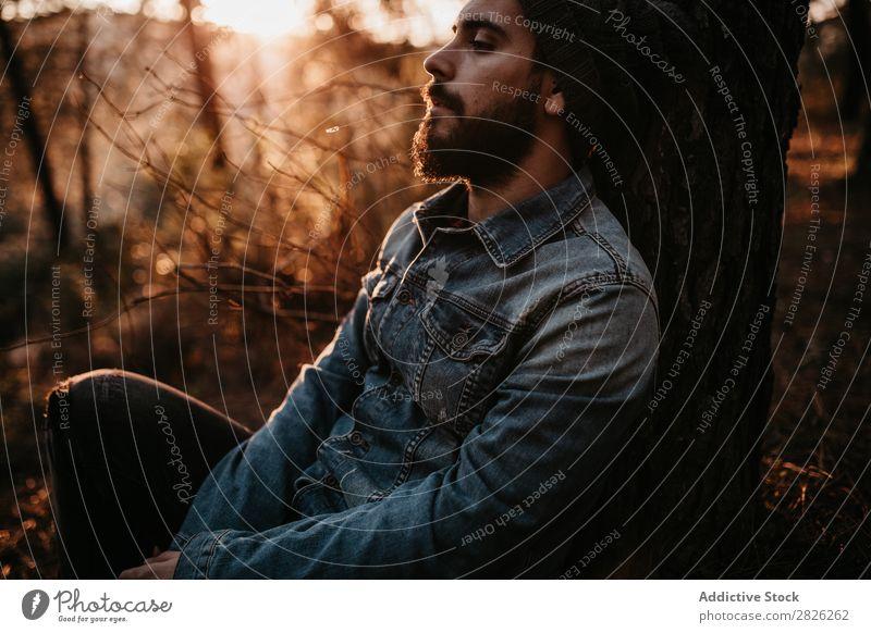 Der Mensch hat eine friedliche Zeit im Wald bei Sonnenuntergang. ruhen sitzen Mann Tourist Blick Baum Porträt Herbst Jugendliche ländlich Natur Erholung stumm