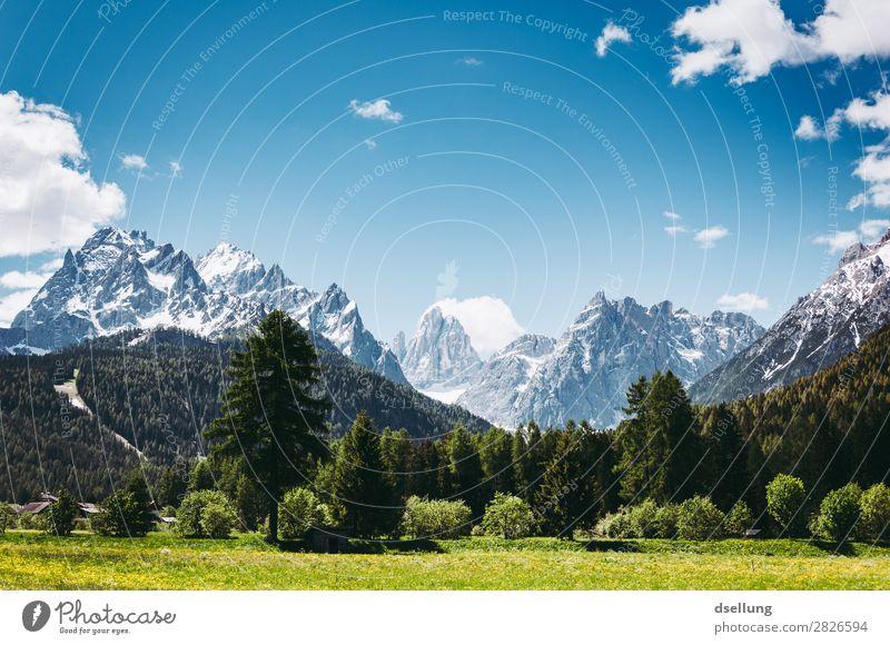 Berggipfel mit Wald im Vordergrund Panorama (Aussicht) Starke Tiefenschärfe Kontrast Schatten Licht Tag Morgen Textfreiraum oben Menschenleer Außenaufnahme