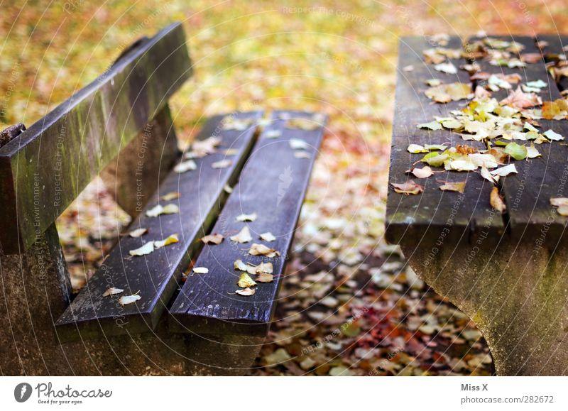 Herbstbank Blatt Garten Park mehrfarbig Parkbank Bank Tisch herbstlich Herbstlaub Holz Holztisch Holzbank Farbfoto Außenaufnahme Menschenleer