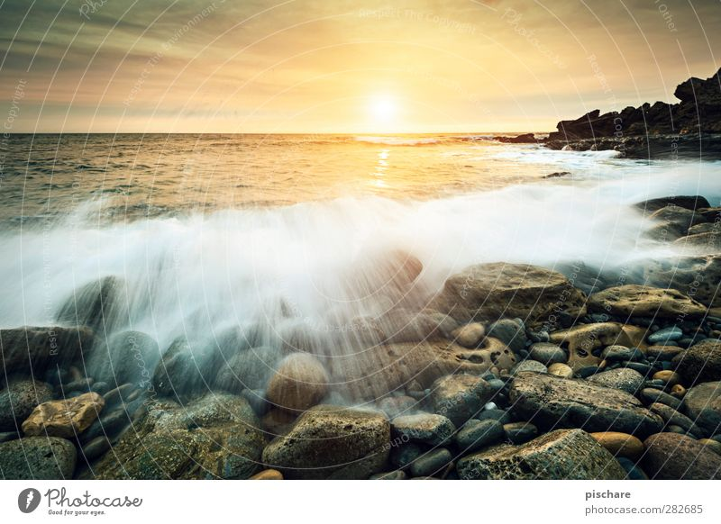 golden hour Natur Landschaft Wasser Sonne Sonnenaufgang Sonnenuntergang Sommer Wellen Küste Meer schön Farbfoto Außenaufnahme Dämmerung Sonnenlicht Gegenlicht