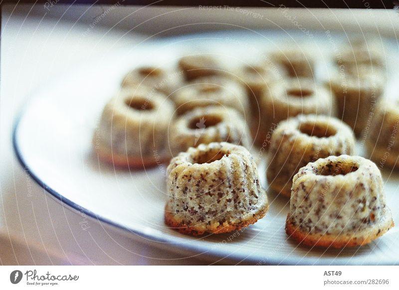 Kleine Gugelhupfe Kuchen Süßwaren Ernährung Kaffeetrinken kaufen Feste & Feiern Muttertag Geburtstag trendy schön süß Mohn Muffin niedlich Menschenleer backen