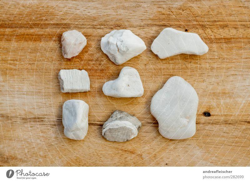 steinsammlung. die zweite. Natur ruhig Stein Ordnung ästhetisch Holzbrett 8 Holztisch Größenunterschied