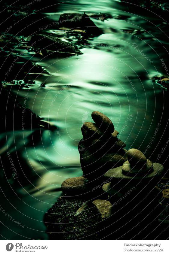 Flow of Time Umwelt Natur Wasser Moos Bach Fluss Stein Stimmung ruhig Weisheit Inspiration kalt Kreativität Langzeitbelichtung Experiment Uhr Farbfoto