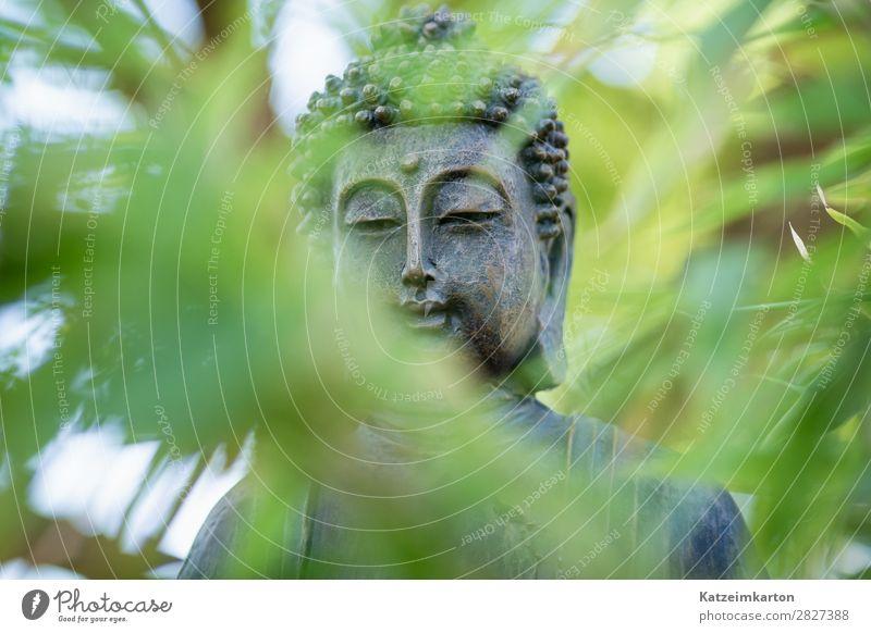 Buddah im Zengarten 2 grün ruhig Lifestyle Religion & Glaube Gefühle Glück Gesundheitswesen Stil Tourismus Garten Stein Häusliches Leben Wohnung Zufriedenheit