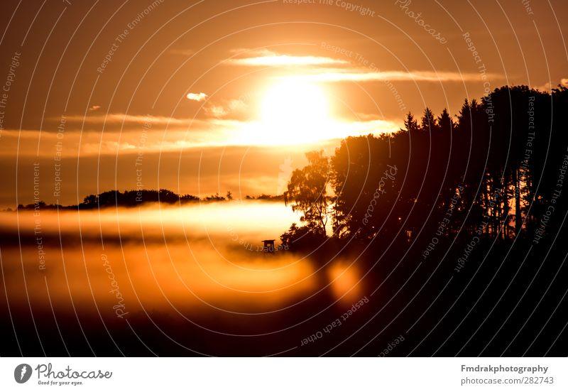The White Sea Ferien & Urlaub & Reisen Tourismus Sonne Umwelt Natur Landschaft Himmel Sonnenaufgang Sonnenuntergang Sonnenlicht Herbst Nebel Baum Wald atmen
