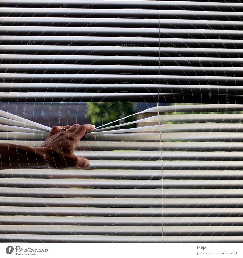 blues Häusliches Leben Wohnung Jalousie Fensterblick Hand 1 Mensch Garten festhalten Blick dunkel lang trist Gefühle Stimmung Langeweile Unlust Fernweh