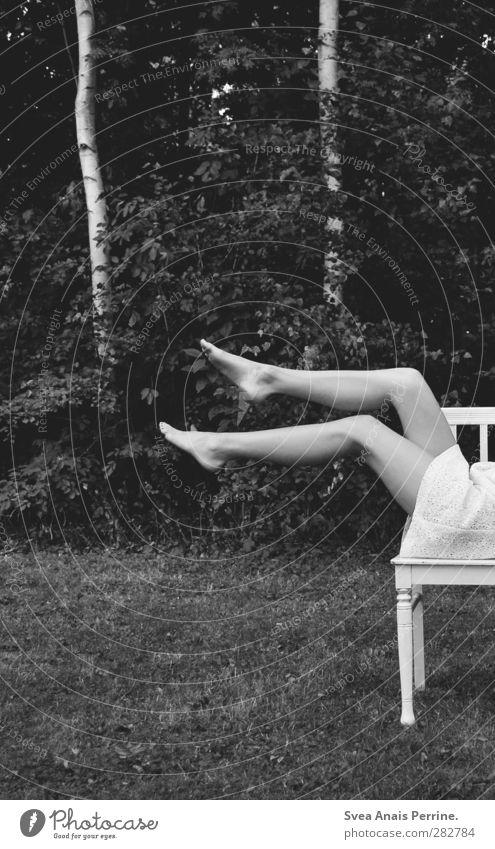 2B. feminin Frau Erwachsene Beine Fuß 1 Mensch Natur Baum Birke Park Wiese Rock Kleid Stuhl liegen sitzen einzigartig Schwarzweißfoto Außenaufnahme Low Key