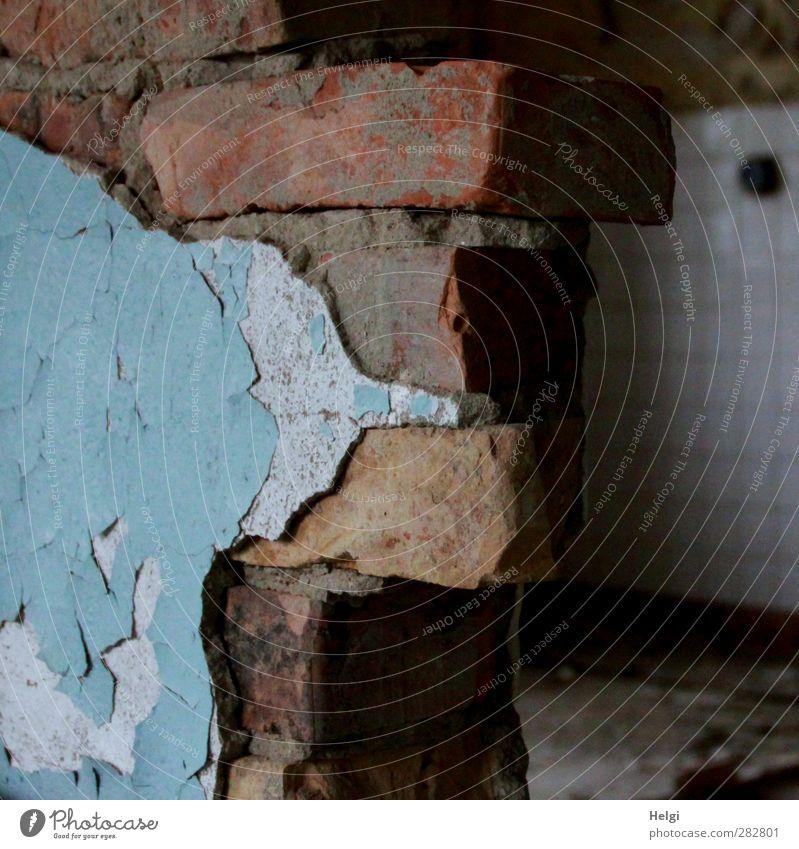 früher war alles besser | ...lang ist´s her... Haus Mauer Wand Putz Fliesen u. Kacheln Stein alt authentisch außergewöhnlich dunkel eckig einfach kaputt blau