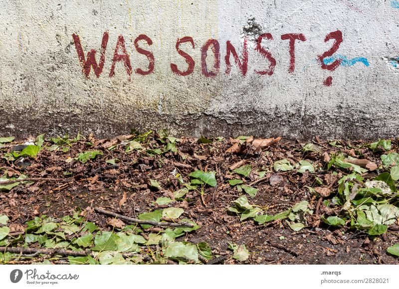 WAS SONST?   Geschriebenes Blatt Boden Mauer Wand Schriftzeichen Graffiti alt dreckig Stadt Beratung Kommunizieren was sonst Fragen Fragezeichen Farbfoto
