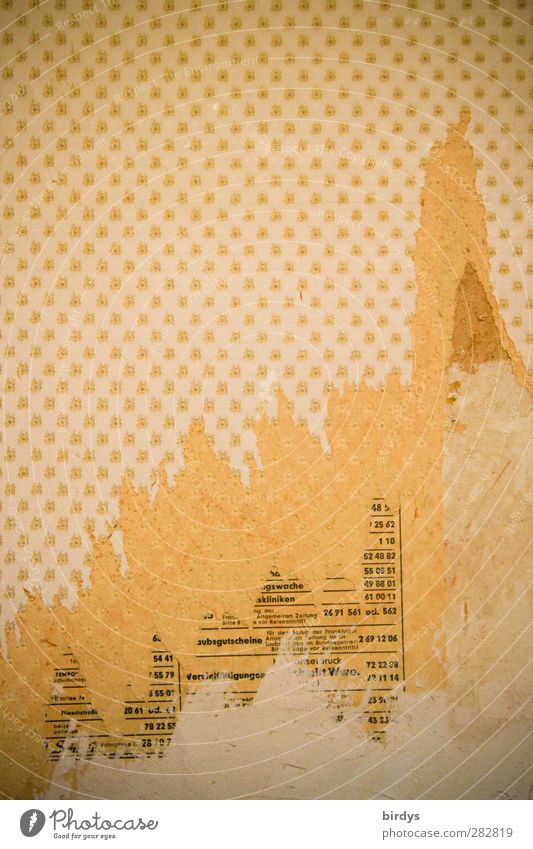Früher war alles besser | und hielt alles besser Häusliches Leben Renovieren Tapete Mauer Wand alt kaputt Originalität Unlust Senior anstrengen Vergangenheit