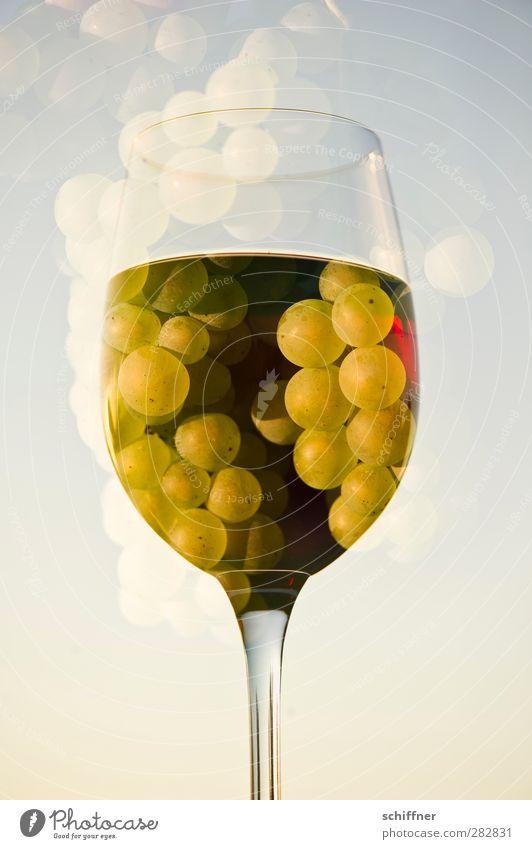 Beerenauslese Lebensmittel Frucht Ernährung Getränk Alkohol Wein Flüssigkeit Weinglas Glas Rotweinglas Weintrauben Traubensaft Weißwein Doppelbelichtung