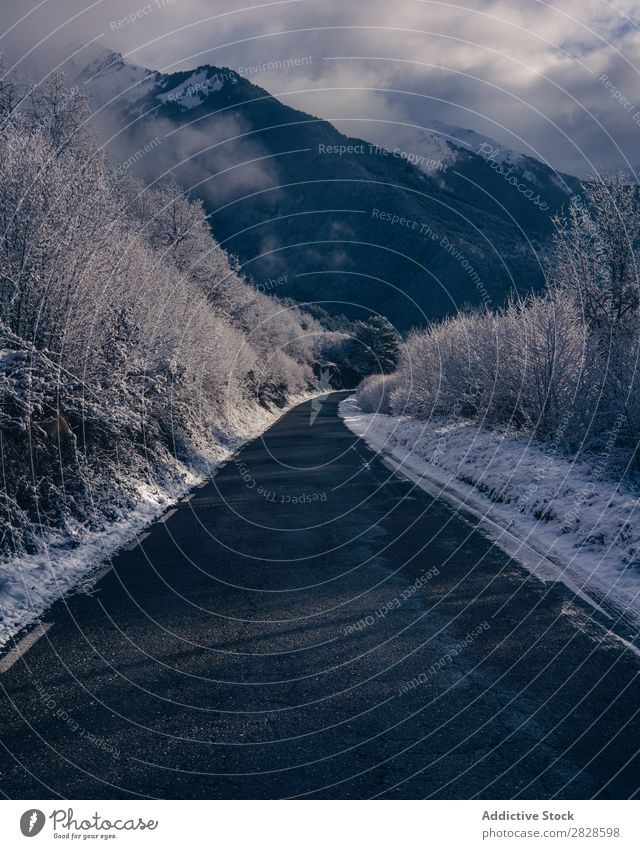 Kleine Straße in schneebedeckten Bergen Natur Winter Berge u. Gebirge Asphalt Landschaft Schnee Ferien & Urlaub & Reisen Himmel Eis schön weiß Jahreszeiten kalt
