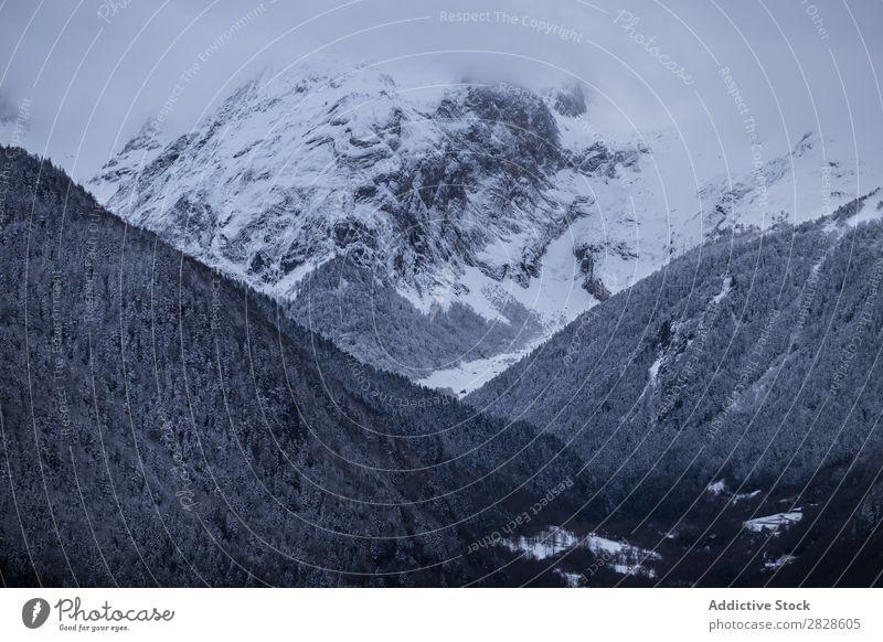 Blick auf den nebligen Berg Berge u. Gebirge Winter Nebel Natur Landschaft Schnee Ferien & Urlaub & Reisen Aussicht Himmel Hügel kalt Wald Wolken schön