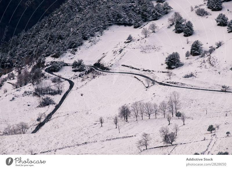 Leere Straße in den Bergen ausleeren ländlich Wald Berge u. Gebirge Winter Landschaft Natur Eis Schnee kalt Jahreszeiten weiß Wetter Laufwerk