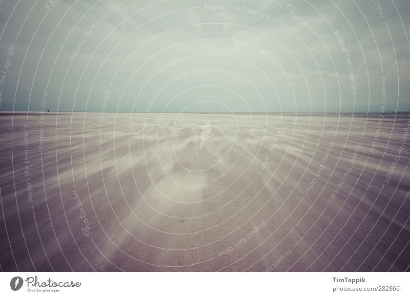 Nowhere #3 Strand Einsamkeit Menschenleer Sand Sandstrand Wind Sandsturm Meer sentimental Traurigkeit Sandverwehung Natur Außenaufnahme Langeoog Insel