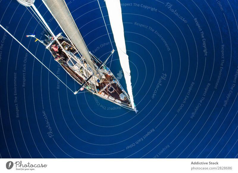 Von oben Aufnahme eines Segelbootes fliegend Leinwand Gefäße Yachting Verkehr Meer blau Abenteuer Ferien & Urlaub & Reisen nautisch Wasser marin Freiheit