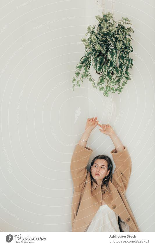 Junge Frau unter dem Cache-Topf hübsch Jugendliche schön Cache-Pot Schiffstau Pflanze Zimmerpflanze brünett attraktiv Mensch Beautyfotografie Erwachsene Stil