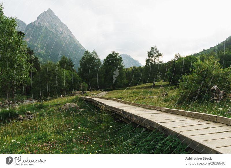 Holzweg in den Bergen Berge u. Gebirge Wiese Aussicht Wege & Pfade klein Landschaft Sommer