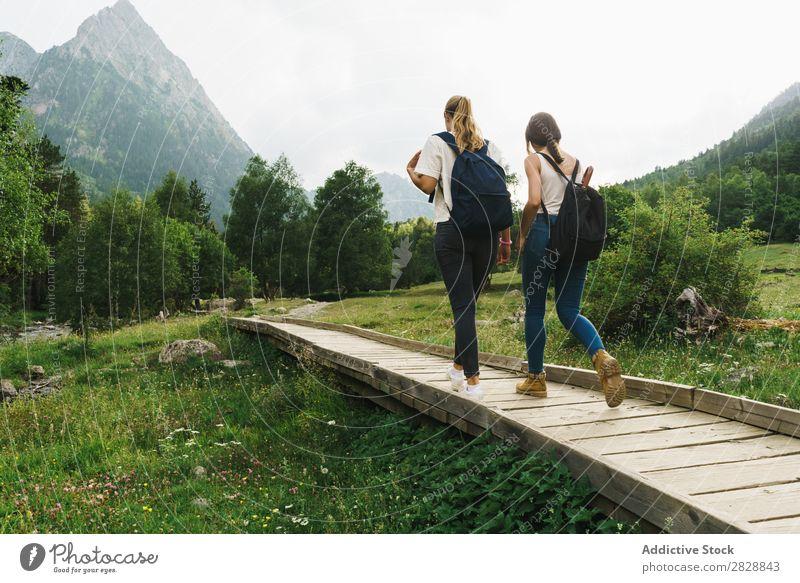 Frauen, die auf einem Holzweg in den Bergen spazieren gehen. laufen Straße ländlich Freundschaft Rucksack Natur
