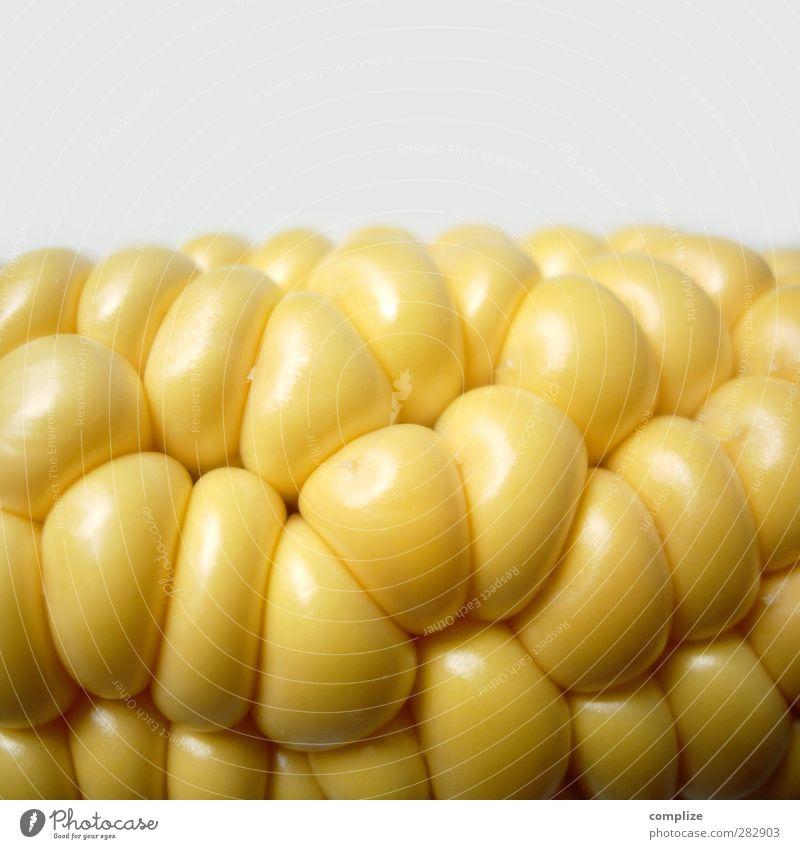 Der Mais oder Das Mais? gelb Essen Frucht Lebensmittel Ernährung Gemüse Bioprodukte ökologisch Fressen Abendessen Diät Picknick Fasten Mittagessen Festessen Salat