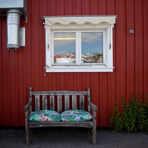 Schwedenrot Ferien & Urlaub & Reisen Haus Erholung Fenster träumen sitzen Häusliches Leben Dorf Hütte Kleinstadt Fischerdorf