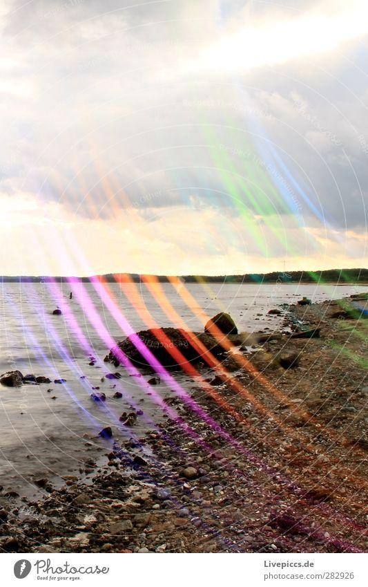 bunte Küste Natur Wasser Pflanze Baum Meer Strand Wolken Landschaft Umwelt Stein leuchten Ostsee Maler Lichtmalerei