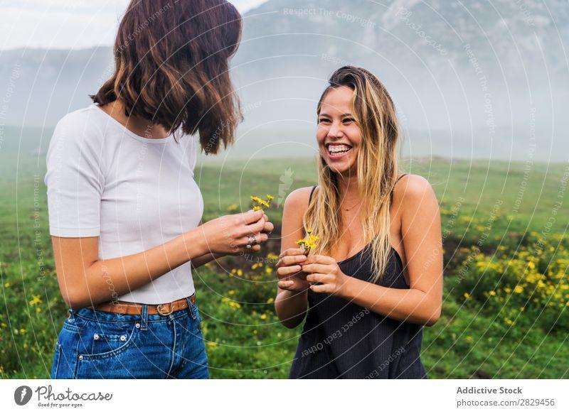 Lächelnde Mädchen mit Feldblumen Frau Wiese Blume Kommissionierung Glück lachen Zusammensein Freundschaft Erholung Berge u. Gebirge Natur Gras schön Jugendliche