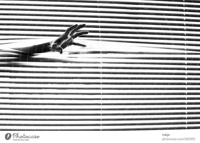 Die Schwarze Hand Mensch Fenster dunkel Gefühle Linie Stimmung Angst gefährlich Streifen bedrohlich lang gruselig greifen Aggression Dieb