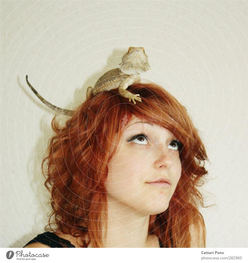 Oh, hello my friend! Mensch Frau Jugendliche schön Tier Erwachsene Junge Frau feminin Haare & Frisuren klein 18-30 Jahre Zusammensein natürlich wild authentisch