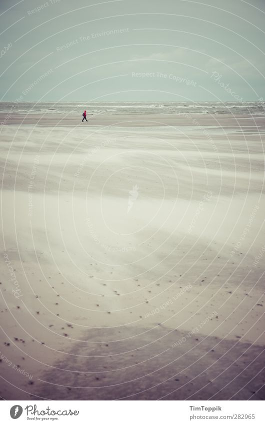 Nowhere #5 Strand Einsamkeit Meer Sand Sandstrand Strandspaziergang einzeln Spaziergang Wellen Traurigkeit sentimental Horizont Langeoog Sturm Sandsturm Wind