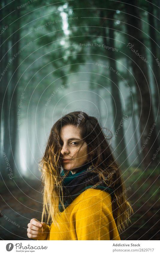 Frau beim Betrachten der Kamera im Wald grün hübsch Ferien & Urlaub & Reisen Tourismus Einsamkeit Natur Landschaft Baum Rüssel Pflanze Park Jahreszeiten Nebel