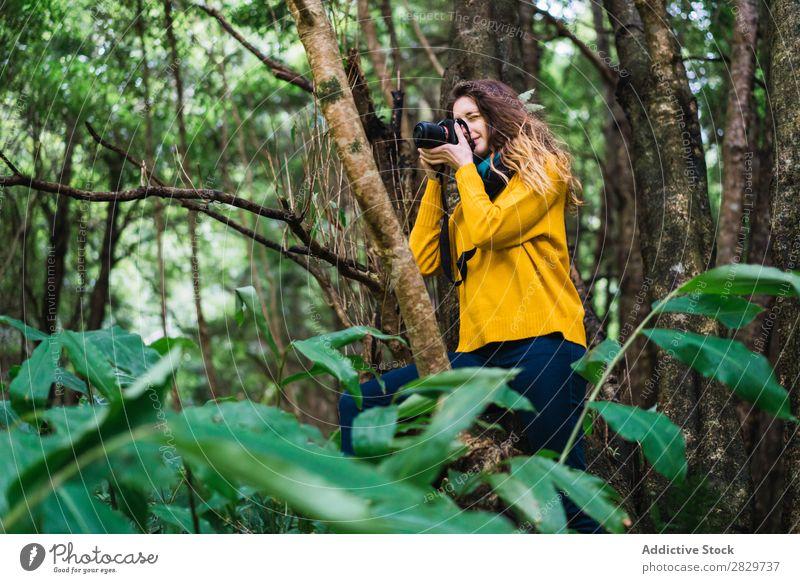 Frau macht Schüsse im Wald grün Fotograf Fotokamera hübsch Ferien & Urlaub & Reisen Tourismus Einsamkeit Natur Landschaft Baum Rüssel Pflanze Park Jahreszeiten