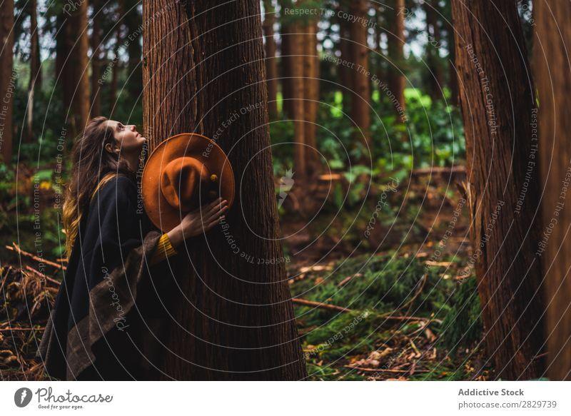 Frau umarmt Baum im Wald Umarmen harmonisch Umwelt Energie Freiheit Liebe umarmend Reisender Gefühle Verbindung Natur Rüssel Schutz natürlich Außenaufnahme