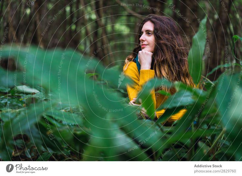 Nachdenkliche Frau im Wald grün träumen besinnlich Fürsorge hübsch Ferien & Urlaub & Reisen Tourismus Einsamkeit Natur Landschaft Baum Rüssel Pflanze Park