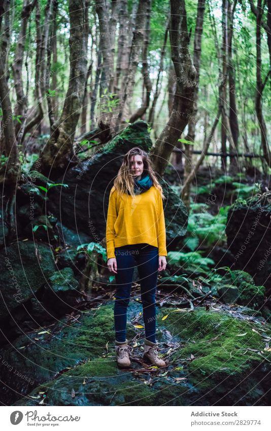 Junge Frau im grünen Wald stehend Blick in die Kamera hübsch Ferien & Urlaub & Reisen Tourismus Einsamkeit Natur Landschaft Baum Rüssel Pflanze Park