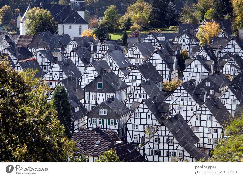 Freudenberg Ferien & Urlaub & Reisen Tourismus Ausflug Städtereise Häusliches Leben Wohnung Haus Sommer Baum Nordrhein-Westfalen Europa Einfamilienhaus