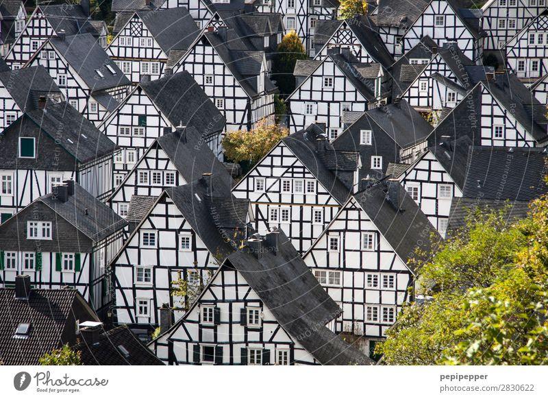 Freudenberg Tourismus Ausflug Häusliches Leben Wohnung Haus Hausbau einrichten Nordrhein-Westfalen Dorf Kleinstadt Altstadt Skyline Einfamilienhaus Platz