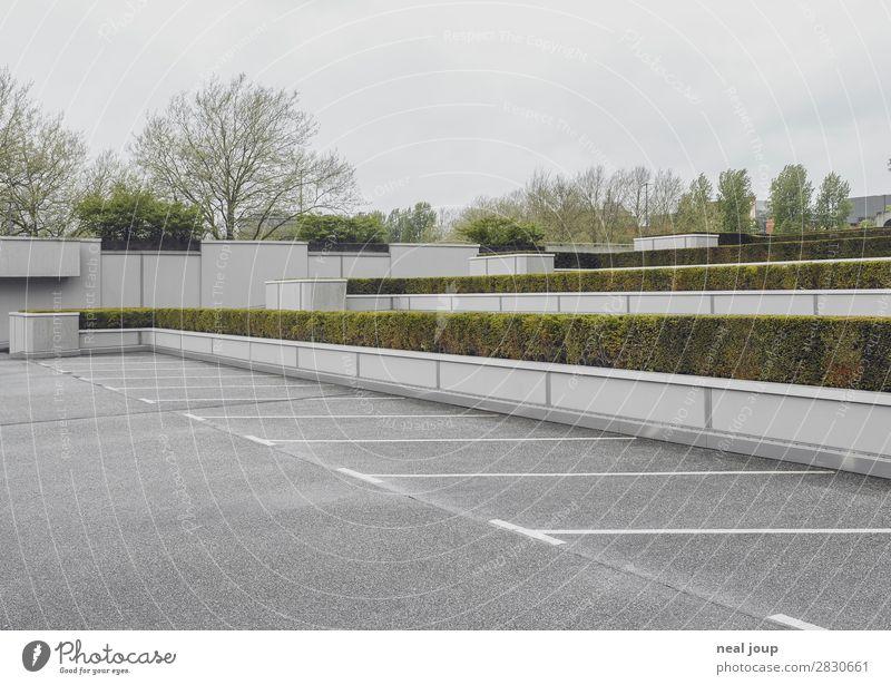 Parken im Park Hecke Hamburg Menschenleer Parkplatz fahren warten frei trist Stadt grau grün Pünktlichkeit diszipliniert Ordnungsliebe Langeweile Überraschung