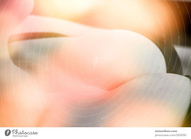 Sommer feminin Sex Sexualität Erotik Ferien & Urlaub & Reisen Irritation Frauenbrust Dekolleté Detailaufnahme Brust Brustumfang Unterwäsche BH Top heiß Sinn