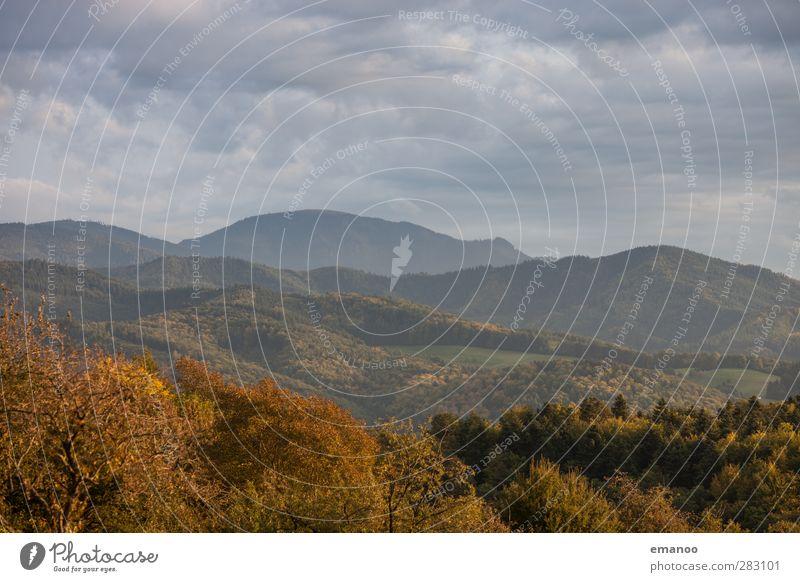 Belchen Ferien & Urlaub & Reisen Tourismus Ausflug Sommer Berge u. Gebirge wandern Umwelt Natur Landschaft Himmel Wolken Herbst Wetter Baum Wald Hügel hoch